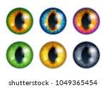 fantasy eyes set   assorted... | Shutterstock .eps vector #1049365454