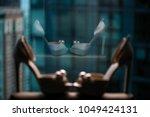 pair of wedding shoes....   Shutterstock . vector #1049424131