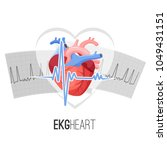ekg readings on paper and human ... | Shutterstock .eps vector #1049431151