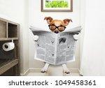 jack russell terrier  sitting... | Shutterstock . vector #1049458361