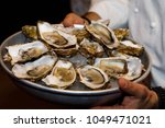 a bowl of oysters in the hands... | Shutterstock . vector #1049471021