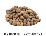 dried whole allspice isolated... | Shutterstock . vector #1049509481