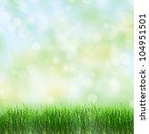 green grass in the summer | Shutterstock . vector #104951501