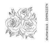rose sketch. black outline on... | Shutterstock .eps vector #1049622374