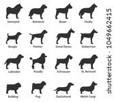 dogs breed. monochrome icons... | Shutterstock .eps vector #1049662415