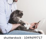 Stock photo handsome man in headphones and with a mobile phone gently holding a cute kitten on his hands 1049699717