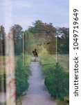 Small photo of Optical Illusion: A man seems to be riding his horse in a path in the green, however in reality a painting is reflected in the window of a room pointing into the green.