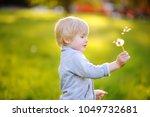 charming blonde little boy... | Shutterstock . vector #1049732681