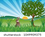 lonely rabbit with plant and... | Shutterstock .eps vector #1049909375