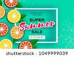 lemon  graprfruit  orange.... | Shutterstock .eps vector #1049999039