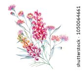 watercolor tropical print with ... | Shutterstock . vector #1050064661
