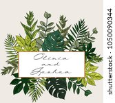 banner with herbs  leaves and... | Shutterstock .eps vector #1050090344