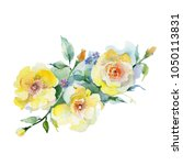 bouquet flower in a watercolor... | Shutterstock . vector #1050113831