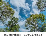 Small photo of Ground and blue sky as high and low.
