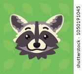 racoon emotional head. vector... | Shutterstock .eps vector #1050191045