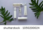 cosmetic packaging set on... | Shutterstock . vector #1050200024