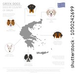 dogs by country of origin.... | Shutterstock .eps vector #1050242699