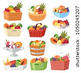 fruit basket vector fruity... | Shutterstock .eps vector #1050245207