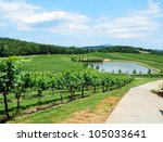 Landscape Of The Vineyards Of...
