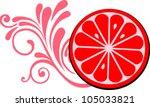grapefruit  isolated on white... | Shutterstock .eps vector #105033821