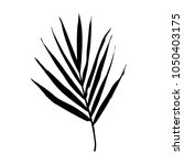 isolated palm leaf silhouette.... | Shutterstock .eps vector #1050403175