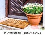 flowers at an entrance   closeup | Shutterstock . vector #1050451421