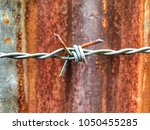Small photo of Closeup focus view of rusty barbed wire with tied or bind sharp tip in front of rusty corroded zinc as blur background. It is a safety fence to prevent invader or thief as a security protection tool.