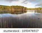 uath lochan at glen feshie in...   Shutterstock . vector #1050478517