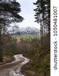 glen feshie track in the...   Shutterstock . vector #1050481007