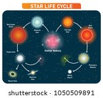 star life cycle steps from... | Shutterstock .eps vector #1050509891