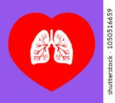 lungs of the person. vector.... | Shutterstock .eps vector #1050516659