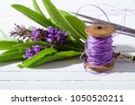 bouquet making from lavender... | Shutterstock . vector #1050520211