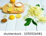 elder flower drink ingredients... | Shutterstock . vector #1050526481