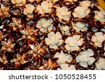 beautiful hair clips isolated... | Shutterstock . vector #1050528455