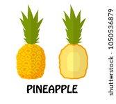 vector illustration flat...   Shutterstock .eps vector #1050536879