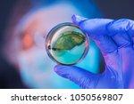female scientist analyzing... | Shutterstock . vector #1050569807