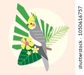 beautiful tropical parrot... | Shutterstock .eps vector #1050616757