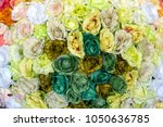 colorful design pattern of... | Shutterstock . vector #1050636785