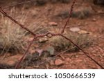 barbed wire rusted wooden fence ... | Shutterstock . vector #1050666539