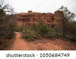 desert scene landscape agave... | Shutterstock . vector #1050684749