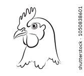 graphic chicken head  vector   Shutterstock .eps vector #1050838601