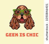dog geek. english cocker... | Shutterstock .eps vector #1050846401