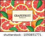 rectangular label on citrus... | Shutterstock .eps vector #1050851771