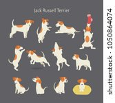 jack russell terrier dog breed... | Shutterstock .eps vector #1050864074