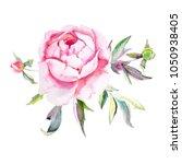 hand painted peonies bouquet... | Shutterstock . vector #1050938405