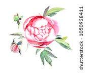hand painted peonies bouquet... | Shutterstock . vector #1050938411