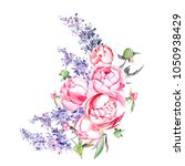 hand painted peonies and lilacs ... | Shutterstock . vector #1050938429