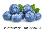 blueberry isolated on white... | Shutterstock . vector #1050995384