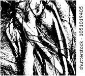 ficus banyan. silhouette. a... | Shutterstock .eps vector #1051019405