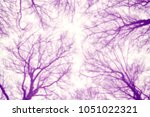 blurred natural abstract...   Shutterstock . vector #1051022321